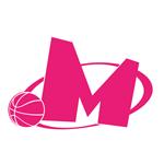 KK Mega Basket