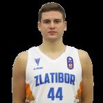Player Bogdan Tejić